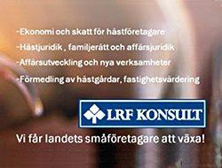 LRF_Banner_riguiden
