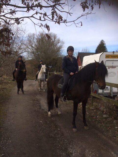 Medryttarna på väg ut med hästarna
