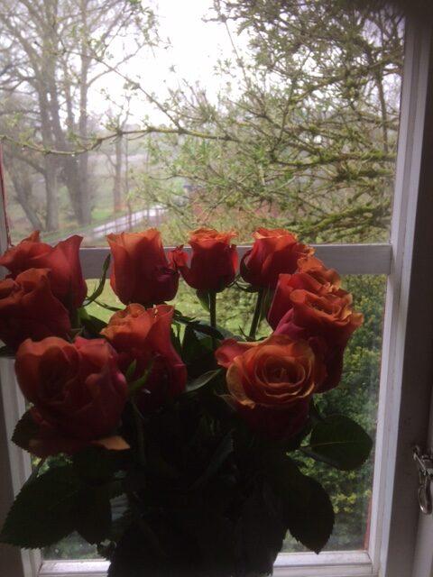 rosor och hagel